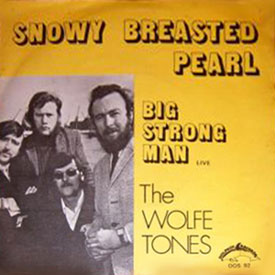 Photo of Big Strong Man album cover by The Wolfe Tones