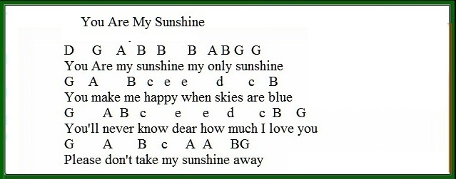 You are my sunshine easy tin whistle version