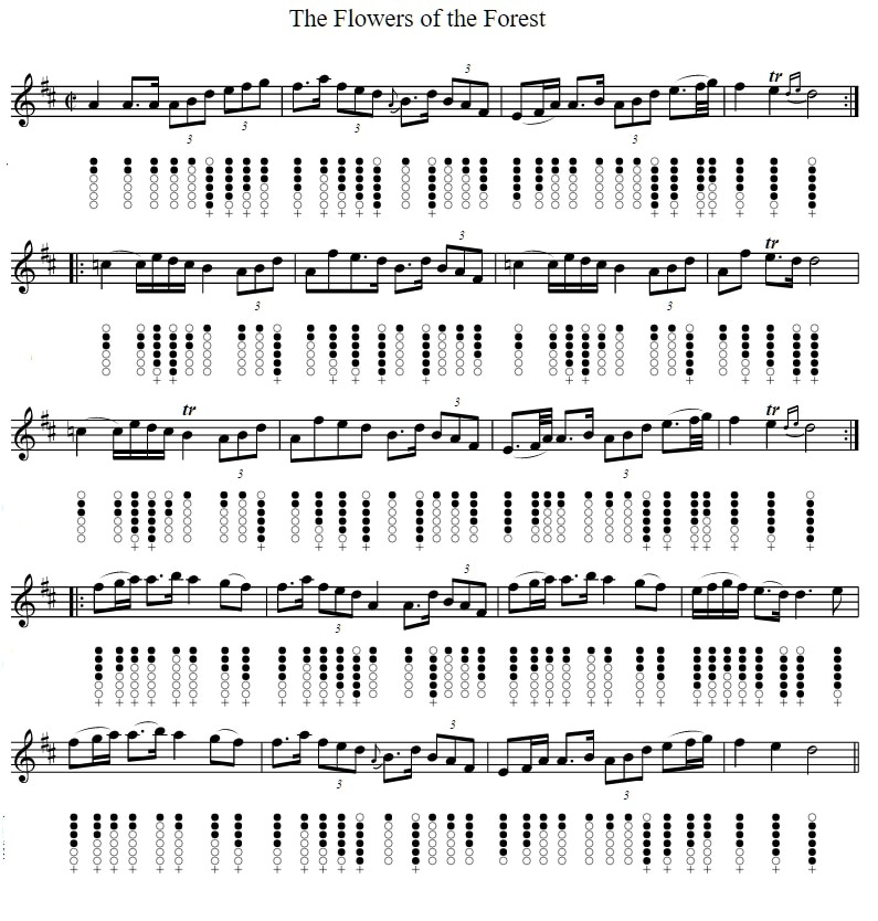Flowers of the forrest tin whistle sheet music