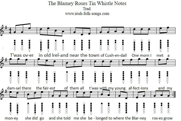 The Blarney Roses sheet music notes