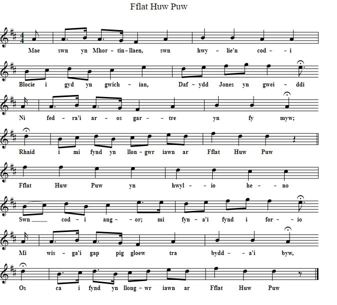 Fflat Huw Puw sheet music in D Major