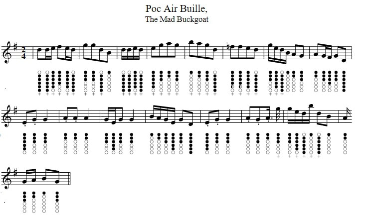 An Poc An Buile sheet music and tin whistle notes