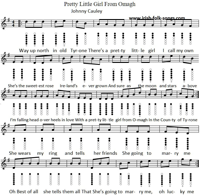 Pretty little girl from Omagh tin whistle sheet music