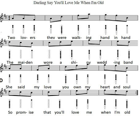 Sheet music notes Darling say you'll love me when I'm old