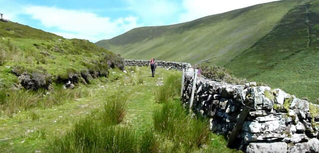 The Galtee Mountains Tipperary showing stone wall and grass track