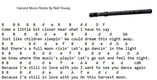 Harvest Moon Tin Whistle Notes By Neil Young