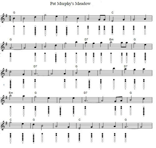 Pat Murphy's Meadow sheet music notes