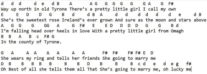Pretty little girl from Omagh tin whistle letter notes
